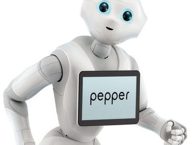 Pepper and his first public appearance in GNT VN.